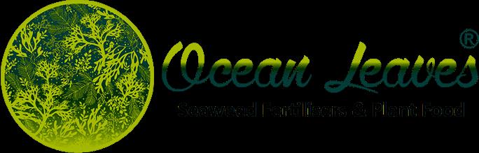 Ocean Leaves